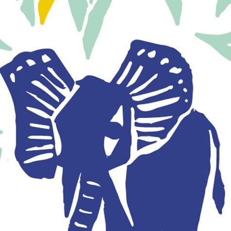 Conte musical / Histoire de l'enfant d'éléphant